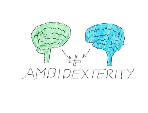 Ambidexterity – Die Kunst beide Gehirnhälften zu nutzen